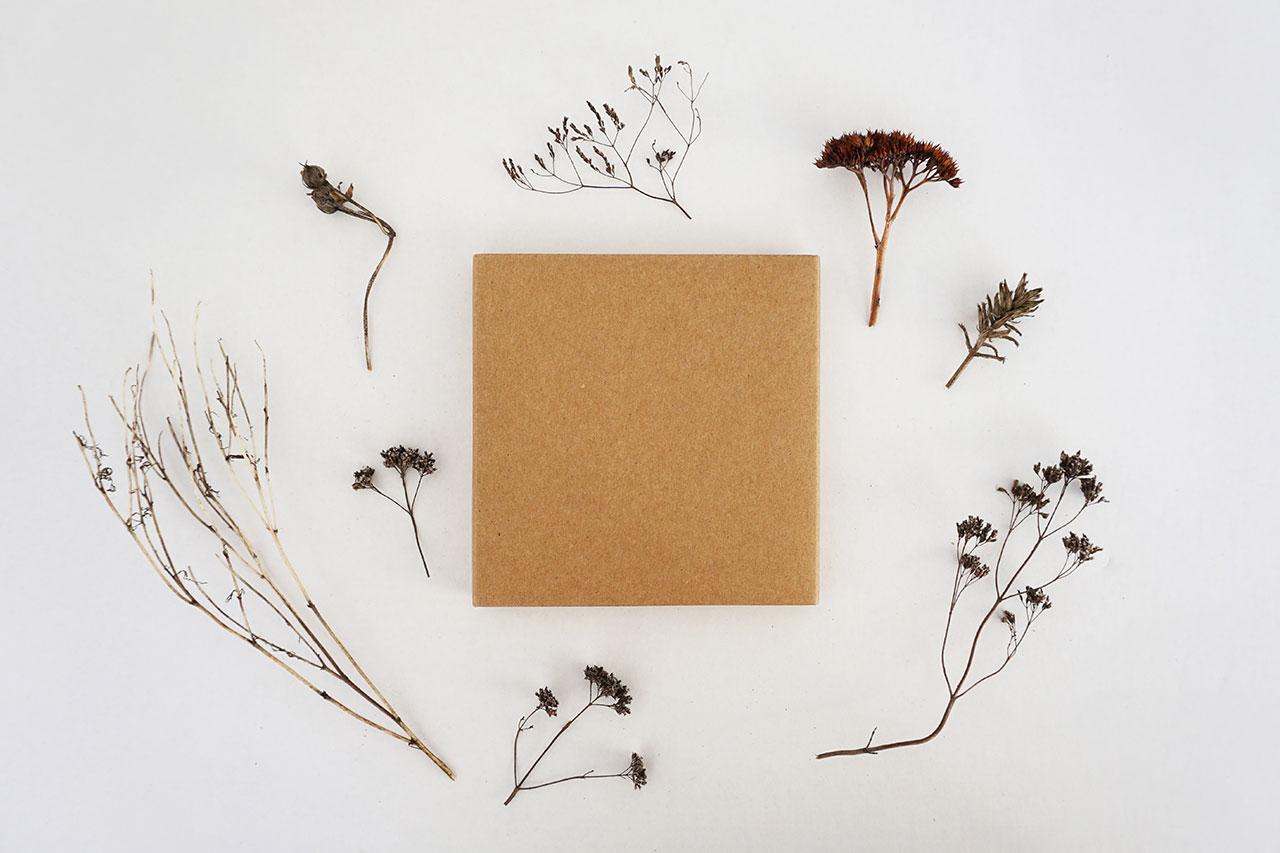 Eco-Friendly Packaging Alternatives